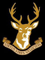 Ballynahinch RFC